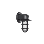 Streamline Flared Wall Sconce in Black Ace w/ Thick Cast Guard & Clear Glass
